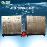AOP水体净化系统一组